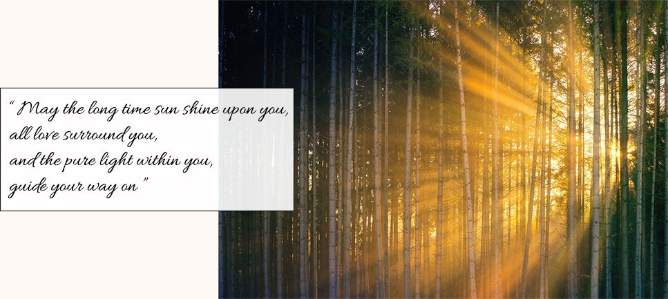 "Intense sun beams find their way across a grove of thin trees. There is a quote attached to the image, that says ""May the long time sun shine upon you, all love surround you, and the pure light within you, guide your way on""."
